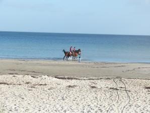 die unendliche Weite des Strandes außerhalb der Saison genießen